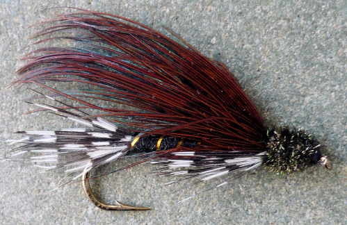 doc sprately wet fly